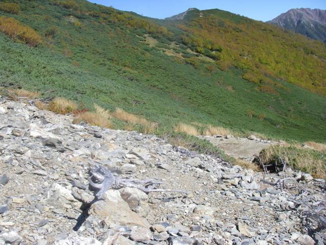 塩見岳~雪投沢~東俣(H19.10.6~8) 090