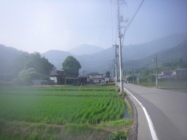 IMGP3670.jpg