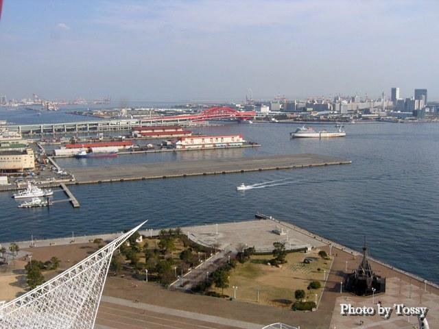 神戸タワーから新港一突堤