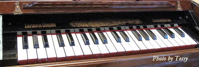 オルガン 鍵盤