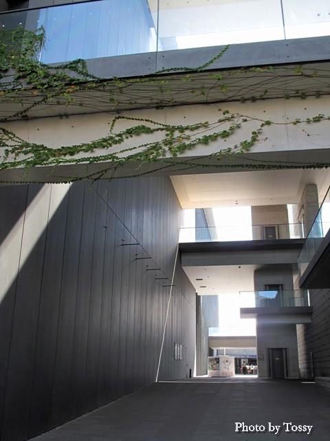 兵庫県立美術館3
