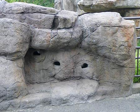 090813ライオン岩