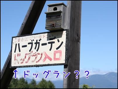 軽井沢3493
