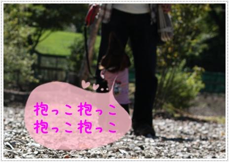 軽井沢3532