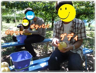 梨狩り1020688