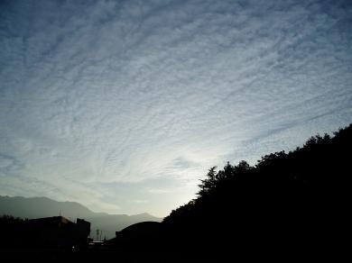 お空です。