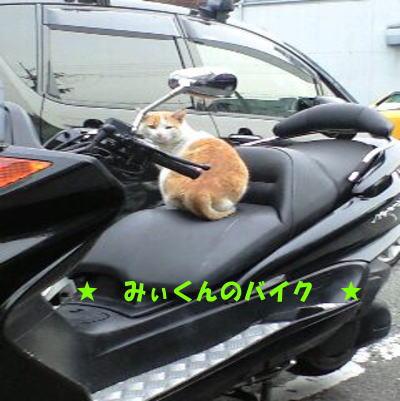 ぼくのバイクやで♪