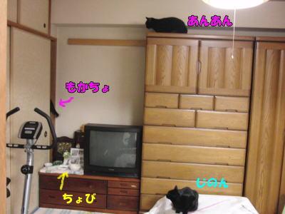 和室で・・