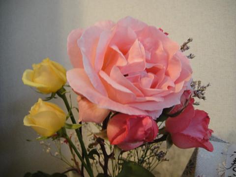 我が家のバラ 2 1006140003