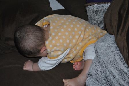 Sleeping20110227_2.jpg