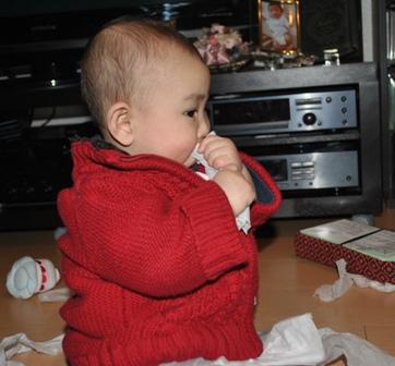 tissue20110222_10.jpg