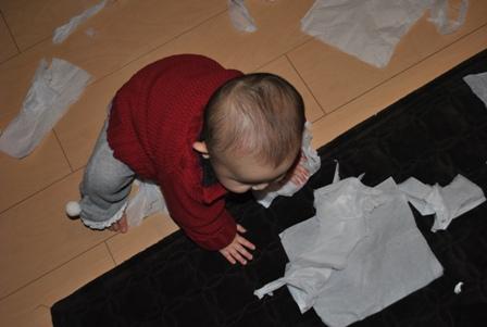 tissue20110222_2.jpg