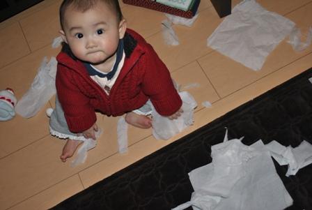 tissue20110222_3.jpg