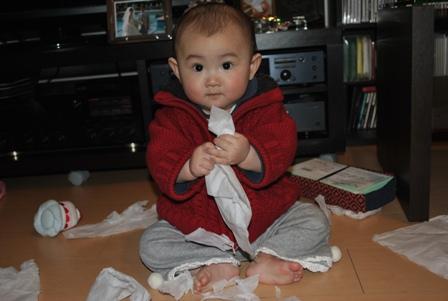 tissue20110222_5.jpg