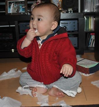 tissue20110222_6.jpg