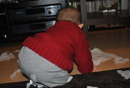 tissue20110222_9.jpg