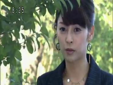 Kamen Rider W 93.avi_000253052