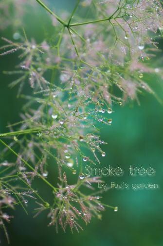 smork tree
