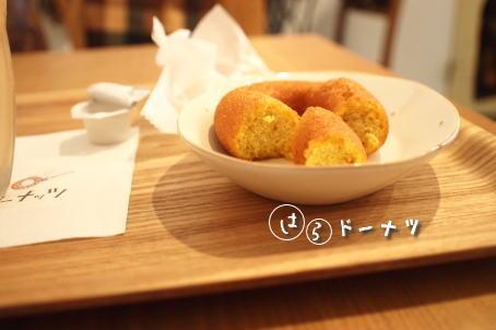 hara_20101101192945.jpg
