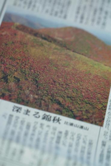 hibayama.jpg