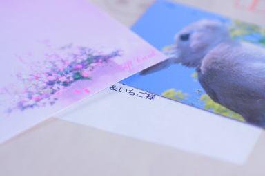 ichigo_20100830165017.jpg