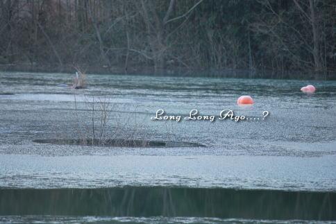 lake1_20100108201407.jpg