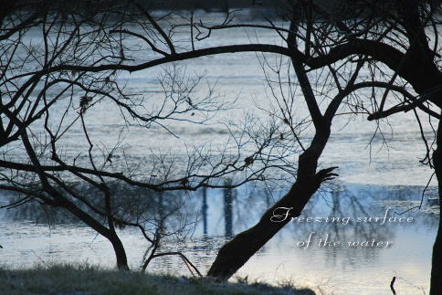 lake2_20100108201537.jpg