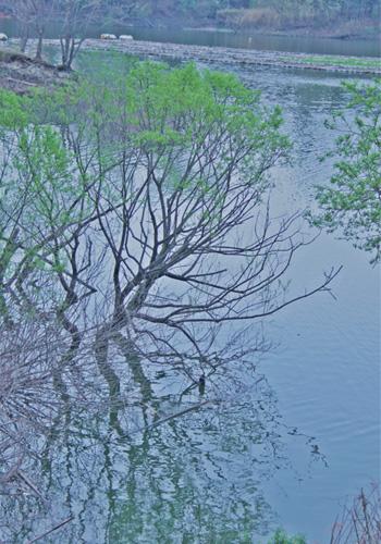 lake_20110427163958.jpg