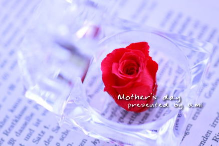 mothersday4.jpg