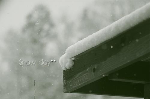 snowday1.jpg