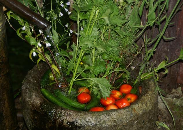PICT0148野菜達