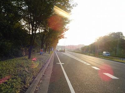 2009_1108syounankokusai0025.jpg