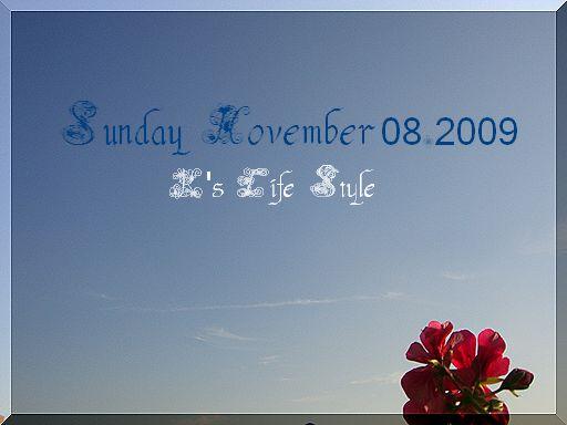 11月8日晴れ暑い日