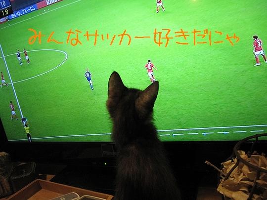 サッカー好き.jpg