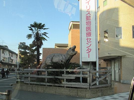 恐竜も診察OK.jpg