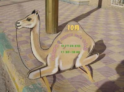 morocco_convert_20091019132555.jpg