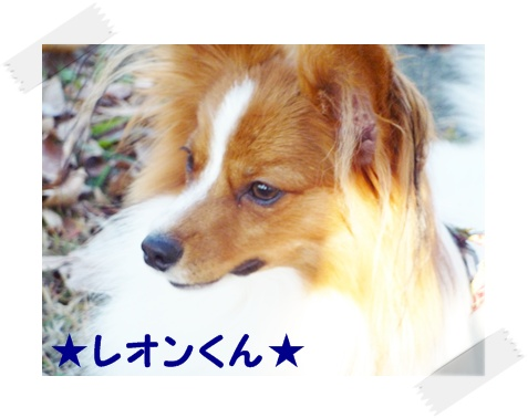091206_公園12
