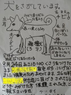 迷子_convert_20090914232444