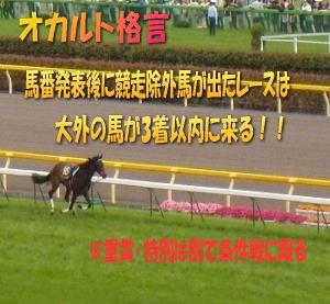 競走除外馬が出た際の大外馬は買い!