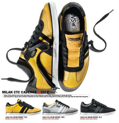 cadence-DVS-MILAN-PINP2.jpg