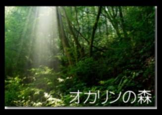 オカリンの森