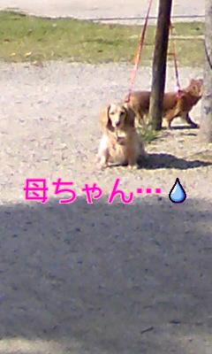 CAWU0V4R.jpg