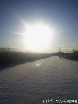 k-2009-12-27-1.jpg