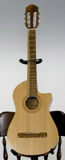 菊ギター第6号正面