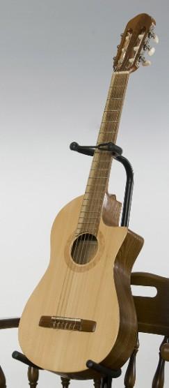 菊ギター第6号斜