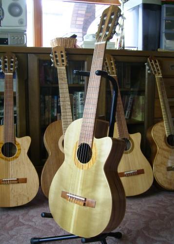 菊ギター第13号 菊ギター群