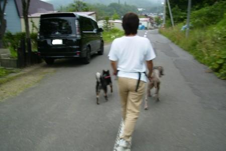 散歩 近所 ウシロ イメージ
