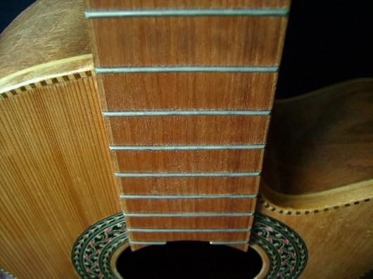 菊ギター第11号上からアップ