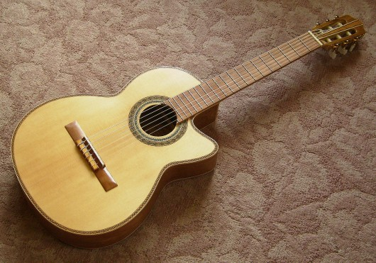 菊ギター第14号完成全体表左斜1