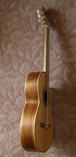 菊ギター第14号完成ヨコ1全体